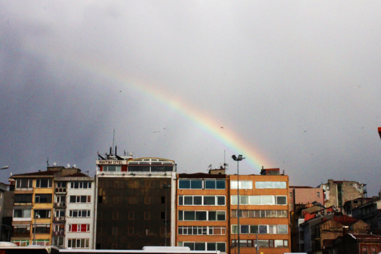 »Rainbow« by Burhan (from Mimbic, 15 years old)